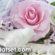 Hoa đất sét – Học làm hoa đất BẤT DIỆT bằng đất sét Nhật, Thái