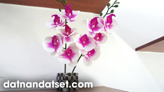học làm hoa đất sét thái lan chính gốc dụng cụ cực đẹp